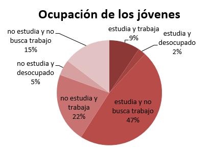 grafico-ocupacion-jovenes